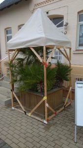 Fertiger Winterschutz für Palmen mit Frostschutzkabeln